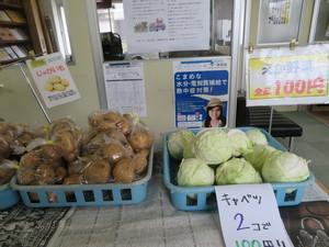 野菜06302